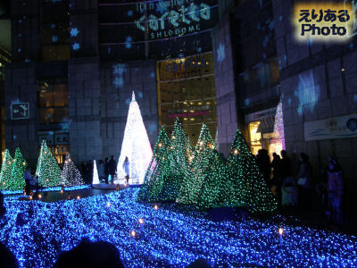 Caretta Illumination 2012 ~ リュミエの森 ~