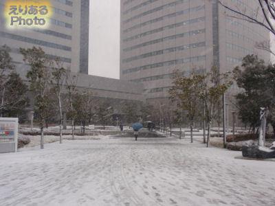 2012年2月29日の東京・豊洲の雪